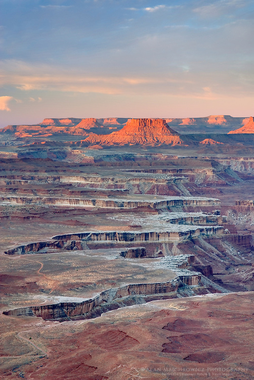 View from the Green River Overlook at dawn, Canyonlands National Park Utah USA