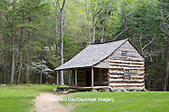 66745-04307 Carter Shields Cabin in spring, Cades Cove area, Great Smoky Mountains National Park, TN