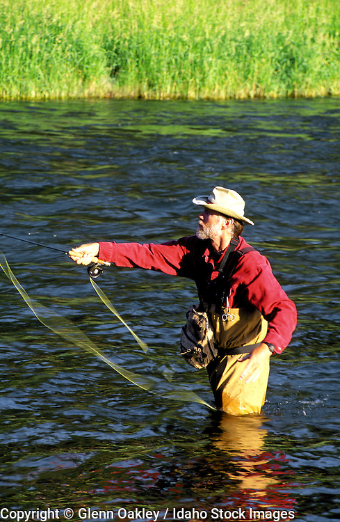 Fly fishing on the Blackfoot R., Montana. MR