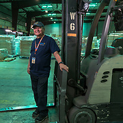 CATAN~O-- PUERTO RICO---NOVEMBER 30, 2017---<br /> Cosme Flores Ortiz, 40 year employee in the Cata&ntilde;o facility.<br /> (Photo by Angel Valentin/Freelance)