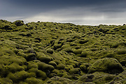 """Eldhraun Lava Field, Iceland along the 'Ring Road"""" (Route 1)"""