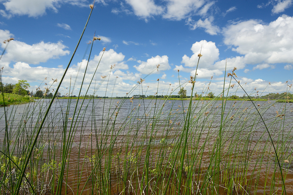 Seney National Wildlife Refuge<br /> Michigan's Upper Peninsula