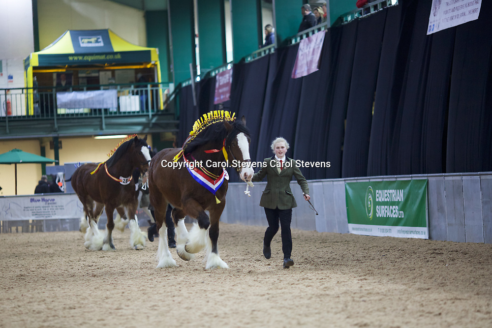 Alice Ford<br />