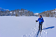 Backcountry skier in fresh snow below Tioga Pass, Inyo National Forest, Sierra Nevada Mountains, California