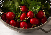 Fresh organic radishes in a vintage colander, on a rustic farm table