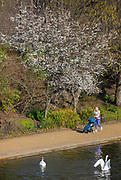 UNITED KINGDOM, London: 26 February 2019. A woman pushes her pram along The Serpentine in Hyde Park on what is set to be the warmest day in February since records began. Temperatures are set to reach up to 20 degrees Celsius in the capital today. Rick Findler / Story Picture Agency