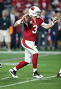 Arizona Cardinals quarterback Carson Palmer (3) throws a pass while the index finger on his right, throwing hand, is taped with red tape during the NFL NFC Divisional round playoff football game against the Green Bay Packers on Saturday, Jan. 16, 2016 in Glendale, Ariz. The Cardinals won the game in overtime 26-20. (©Paul Anthony Spinelli)