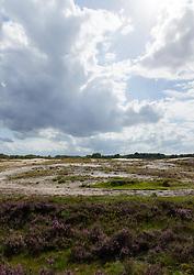 Pano Zuiderheide Laren Noord Holland