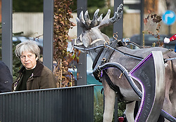 © Licensed to London News Pictures. 09/12/2017. Maidenhead, UK. Prime Minister Theresa May passes a replica reindeer as she shops in her constituency. Photo credit: Peter Macdiarmid/LNP