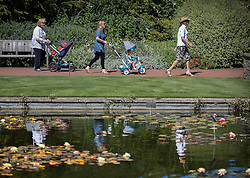© Licensed to London News Pictures. 23/08/2016. Wisley, UK.  Visitor are reflected in the Canal in the sunshine at RHS Wisley. Photo credit: Peter Macdiarmid/LNP