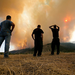 (left to right) Paul Unser, General Contractor with Greenwater, and firefighters Jay Bird and Tyson Vogen, from Great Basin, Utah, watch as the Elk fire grows in the distance while stationed at the Incident Command Area near Pine, Idaho. Sunday August 11, 2013