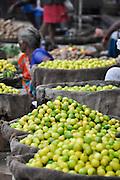 Limes for sale at the market, Varanasi, Uttar Pradesh, India