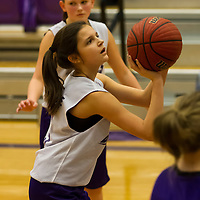 01-19-14 Berryville Youth Basketball vs. Elkins  Game 3