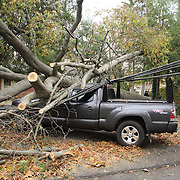 A fallen tree which fell onto a vehicle and brought down powerlines in Comstock Hill Avenue, Norwalk, Connecticut during the storm from Hurricane Sandy. Norwalk, CT. USA. 30th October 2012. Photo Tim Clayton