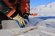 Scientist bags ice core for transport to lab from atop frozen fjord; Kongsfjorden, Svalbard, Norway.