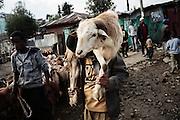 Pastore, Addis Abeba 8 settembre 2014.  Christian Mantuano / OneShot