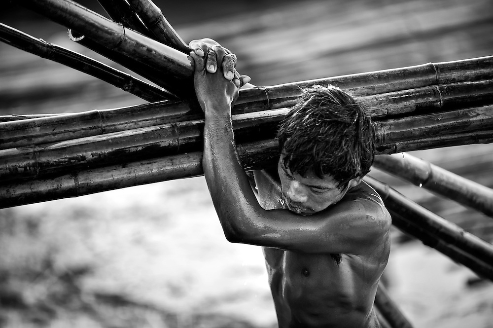 A man taking bamboo from the Irrawaddy river, Myanmar to load on a truck, it's heavy and slippery work and bamboo has very sharp notches, a tough job
