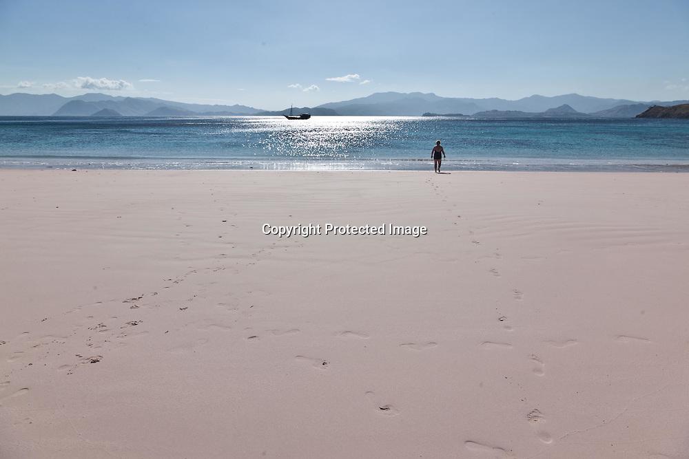 Indonesia, Komodo island,  Padar deserted island , in Komodo national park, beach with pink sand drom red coral
