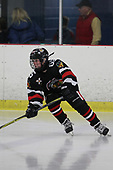 FRI 1520 05 KV RENEGADES V MICHIGAN ICE HAWKS