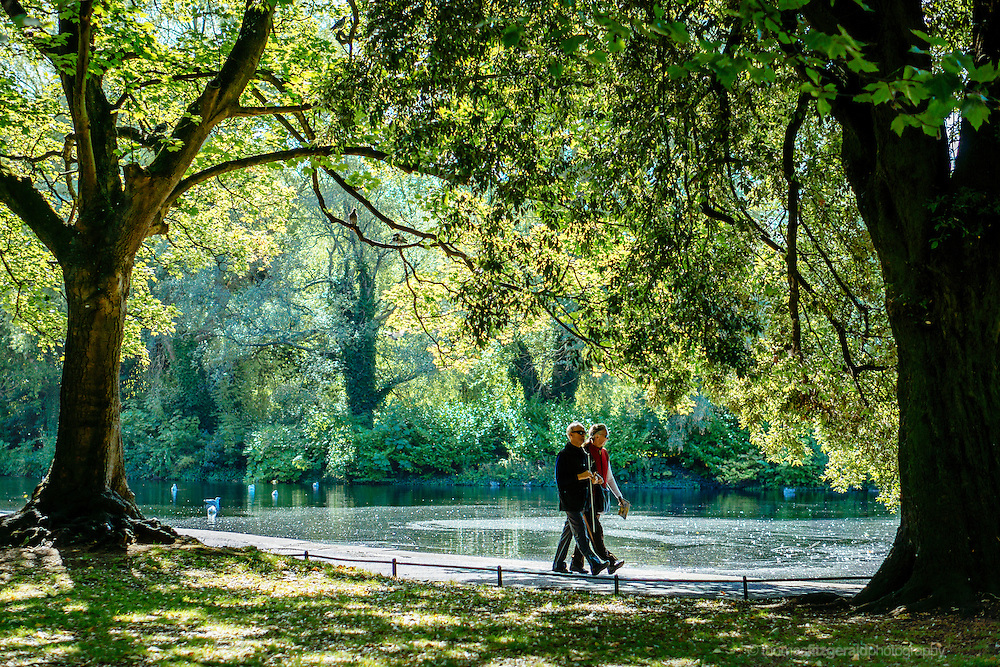 People walk by the side of a pond in this summer scene in a Dublin Park