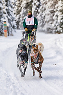 Musher Jason Dunlap competing in the Fur Rendezvous World Sled Dog Championships at Goose Lake Park in Anchorage in Southcentral Alaska. Winter. Afternoon.