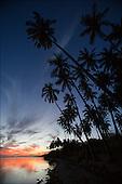 Coconut Grove Molokai