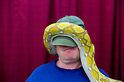 David Gotham's, of Kalamazoo, reticulated python climbs on his head at the West Michigan Pet Expo on Sunday, April 3, 2016, at DeltaPlex Arena in Grand Rapids, Mich. The two-day expo finished Sunday. (Nick Gonzales | Mlive.com)