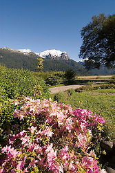 Chile, Lake Country: Flowering spring scene at Hotel Peulla in Peulla...Photo #: ch661-33499..Photo copyright Lee Foster www.fostertravel.com, lee@fostertravel.com, 510-549-2202.