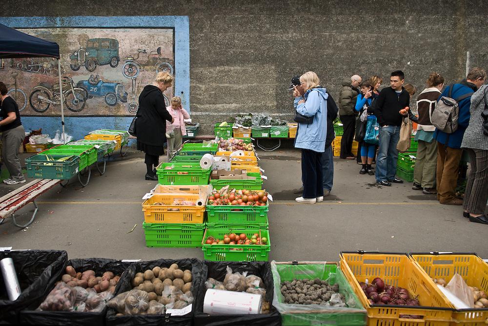 Shoppers at Lyttelon farmer's market browse local organic produce