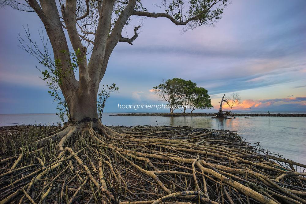 Vietnam Images-seascape-phong canh bien- Gò Công hoàng thế nhiệm