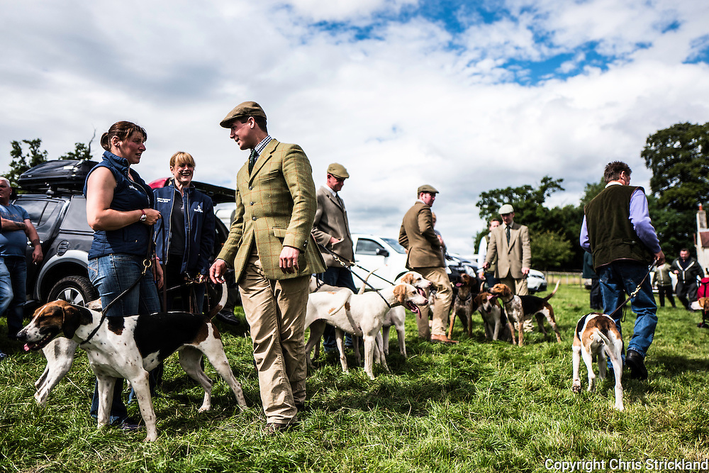Bedrule, Bonchester Bridge, Hawick, UK. 31st July 2016. Jedforest Hunt Hound, Terrier & Lurcher Show.