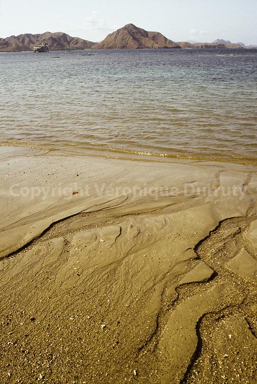 From island to island : Dragons's land : Komodo island landscape