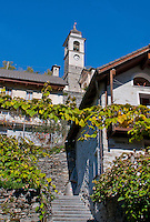 Grape arbor on stone house and church tower in Auressio in the Valle Onsernone in Ticino, Southern Switzerland.