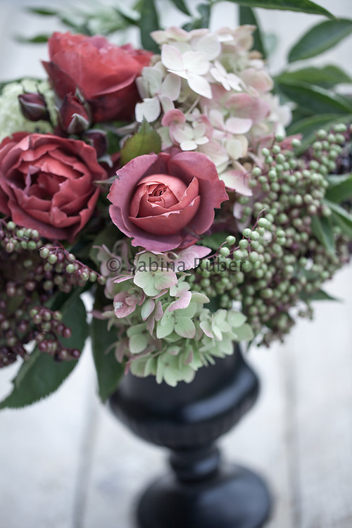 Flower arrangement with Rosa 'Hot Chocolate', Elderberries and Hydrangea in black urn like vase