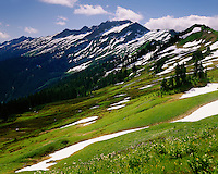 Meadows of White Pass along the Pacific Crest Trail, Glacier Peak Wilderness Washington USA