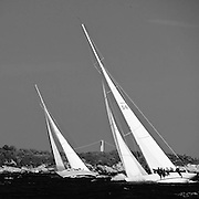Columbia, American Eagle 12 Metre Class, sailing in the Museum of Yachting Classic Yacht Regatta, race one.