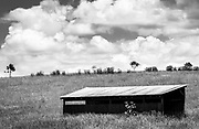 The hard lines and tones in the small shed contrast nicely with the softer lines of the natural field and clouds.