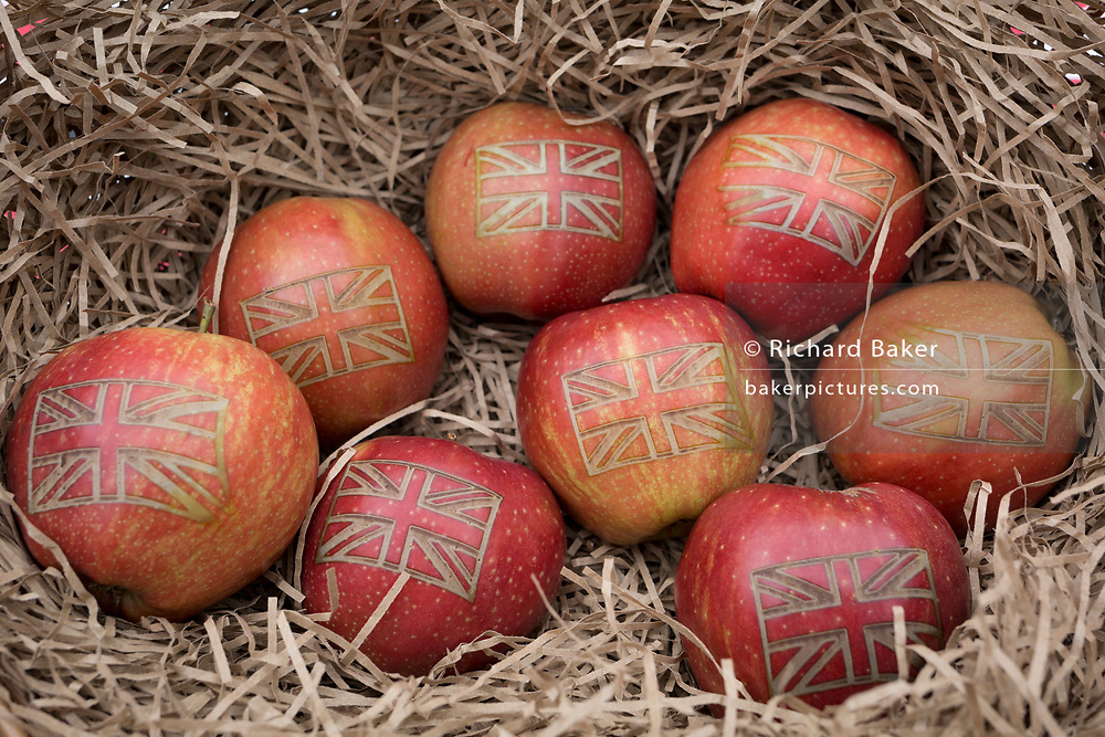 On Brexit Day, the date that the UK leaves the European Union, Red Princes apples are seen in detail in a basket, displayed by 'British Apples & Pears', an organisation representing British fruit growers, in Westminster, on 31st January 2020, in London, England.
