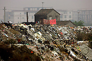 A man sorts through trash in an area where much of the world's electronic waste _ from cell phone chargers to mainframe computers _ ends up in Guiyu and other small towns like it in eastern China, Thursday March 16, 2006. Workers, many of them poorly paid migrants strip, smash and melt down circuit boards, mainly to extract the copper and other precious metals inside. The business has created massive pollution from leaded glass and other toxic materials. A water sample taken from the site revealed lead levels 2,400 times higher than the World Health Organization's limit for drinking water.