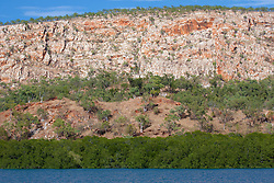 Mangroves line the shore in Talbot Bay near the Horizontal Waterfalls.