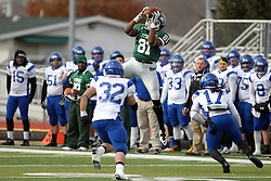 15 November 2014:  Quincy Butler during an NCAA division 3 football game between the North Park Vikingsand the Illinois Wesleyan Titans in Tucci Stadium on Wilder Field, Bloomington IL