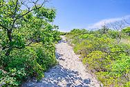 Path to  Long Island Sound. Long Island Sound, Southold, NY