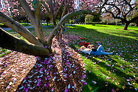 The California State Capitol Park, Monday Feb. 22, 2010. .Photo Brian Baer
