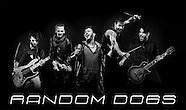 Random Dogs