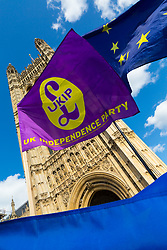 A UKIP flag and an EU flag catch the breeze as Parliament debates a move by MPs to get an extension to Article 50 rather than allowing the Government to leave the EU without a deal on October 31st. London, September 04 2019.