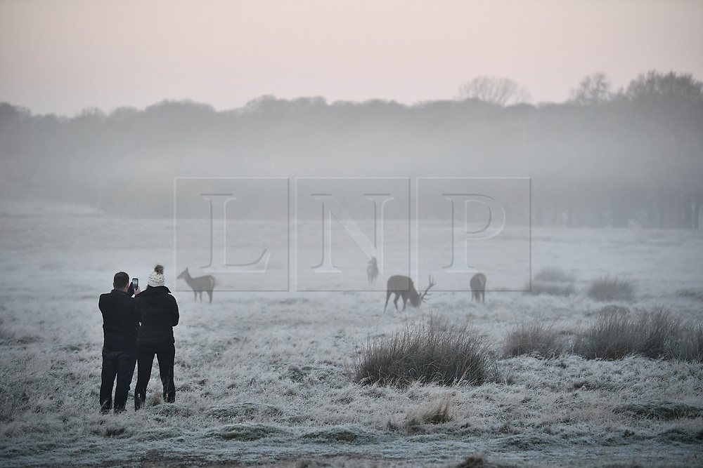 © Licensed to London News Pictures. 19/01/2020. London, UK. Frost covers the landscape at sunrise in Richmond Park in west London on a bright and freezing Winter morning. Photo credit: Ben Cawthra/LNP