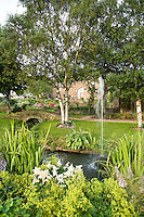 Pond with Alchemilla mollis and fountain