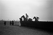 """16/02/1963<br /> 02/16/1963<br /> 16 February 1963<br /> Horse Racing at Baldoyle racecourse, Dublin. Picture shows """"Jungle Trix"""" (J.J. Rafferty up) coming over the last jump in front of """"Brown Diamond"""", (winner) (F. Shortt up) in the Baldoyle Handicap Chase."""