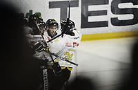 29. september 2009, Ishockey, Get-Ligaen, Stavanger Oilers - Vålerenga , Siddishallen , Oilersjubel ,  Foto: Tommy Ellingsen
