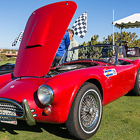 1963 Shelby Cobra 289 in the Shelby Paddock at the 2012 Santa Fe Concorso.